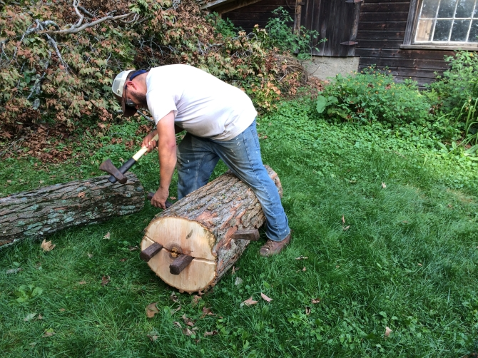 Splitting a Maple log for a Roman Bench in 2014.